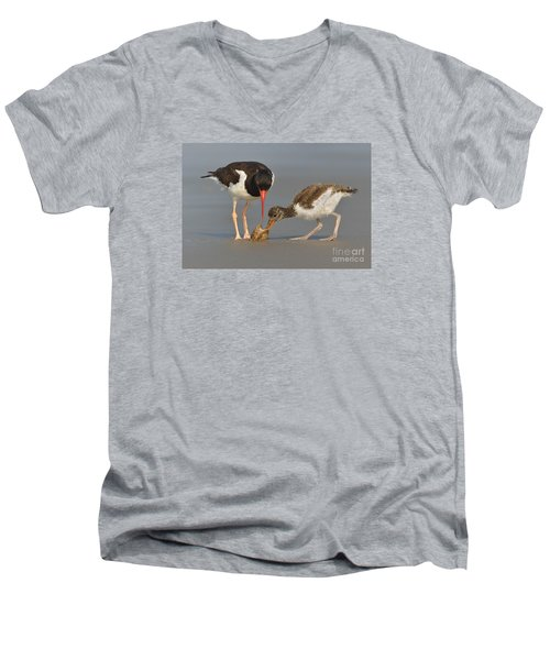 Men's V-Neck T-Shirt featuring the photograph Teaching The Young by Jerry Fornarotto