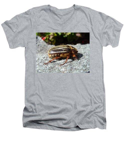 Ten-lined June Beetle Profile Men's V-Neck T-Shirt
