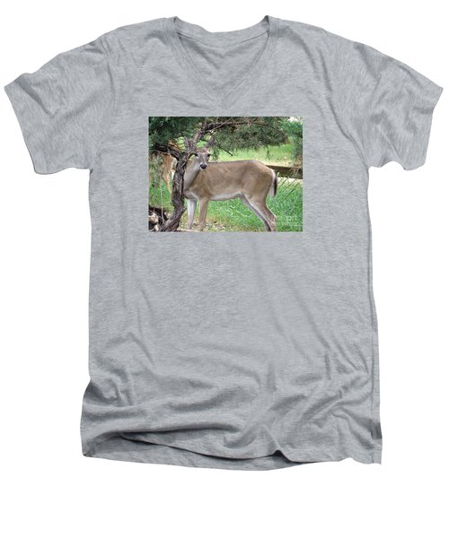 Men's V-Neck T-Shirt featuring the photograph Texas Beauty - White Tail Doe by Ella Kaye Dickey