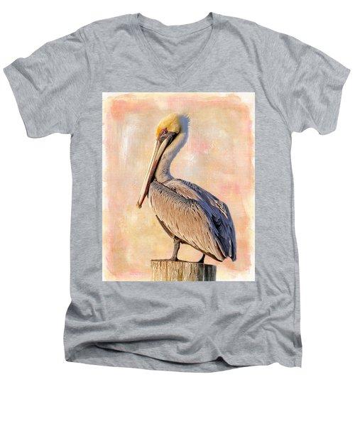Birds - The Artful Pelican Men's V-Neck T-Shirt