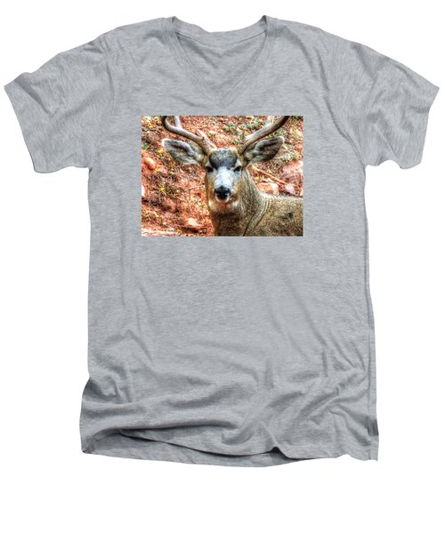 Men's V-Neck T-Shirt featuring the photograph The Buck I by Lanita Williams
