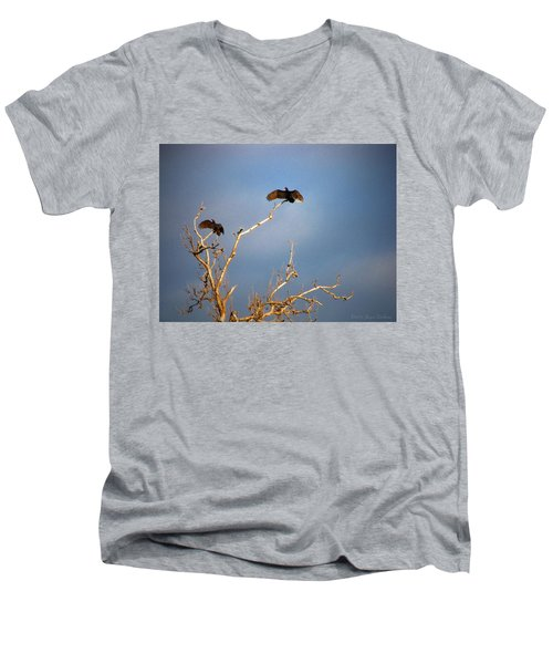 The Buzzard Roost Men's V-Neck T-Shirt by Joyce Dickens