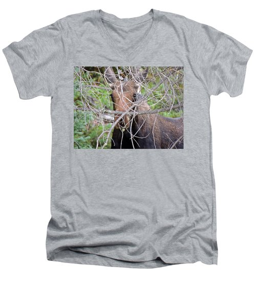 Men's V-Neck T-Shirt featuring the photograph The Calf by Lynn Sprowl