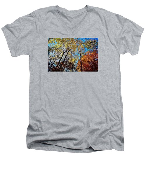 Men's V-Neck T-Shirt featuring the photograph The Canopy by Daniel Thompson