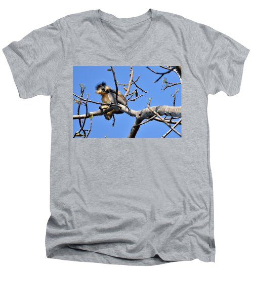 The Capped One Men's V-Neck T-Shirt by Fotosas Photography