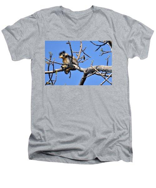 The Capped One Men's V-Neck T-Shirt
