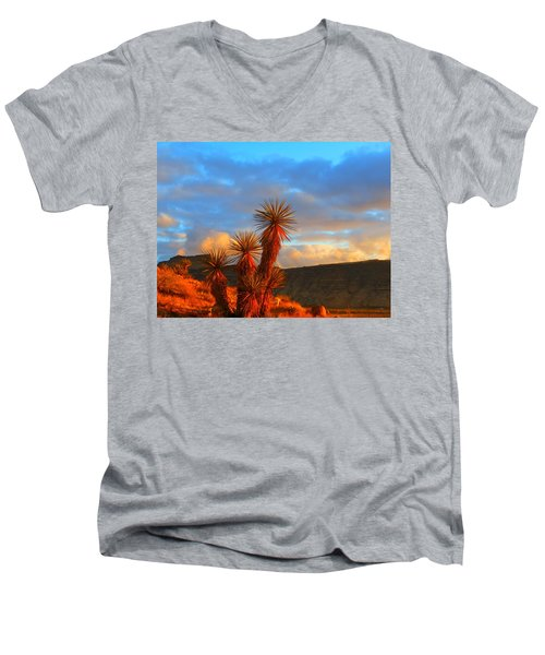 The Cerbat Foothills Men's V-Neck T-Shirt