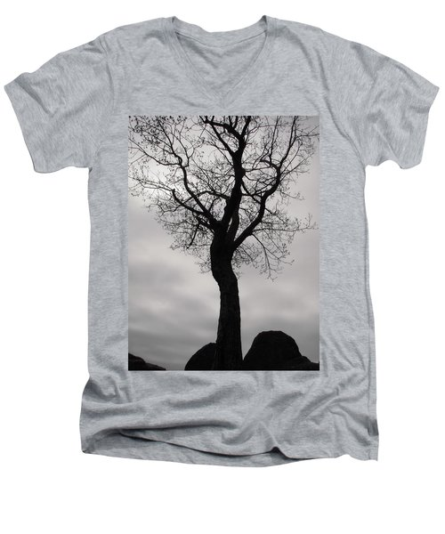 The Chill Of Spring In The Shenandoah Men's V-Neck T-Shirt
