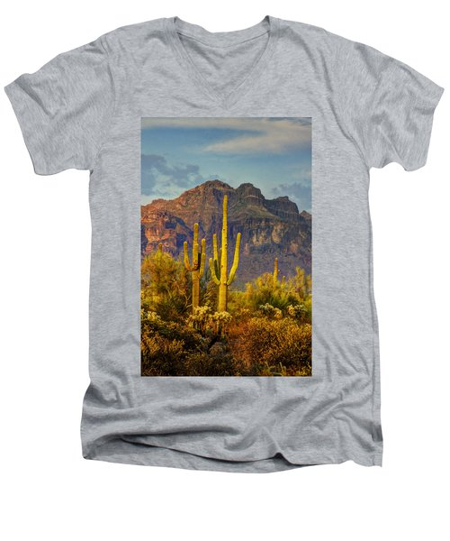 The Desert Golden Hour II  Men's V-Neck T-Shirt