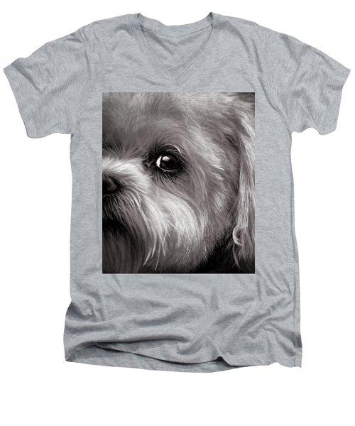 The Dog Next Door Men's V-Neck T-Shirt