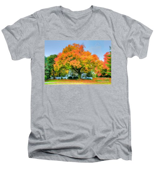 Men's V-Neck T-Shirt featuring the photograph The Family Tree In Autumn by Robert Pearson