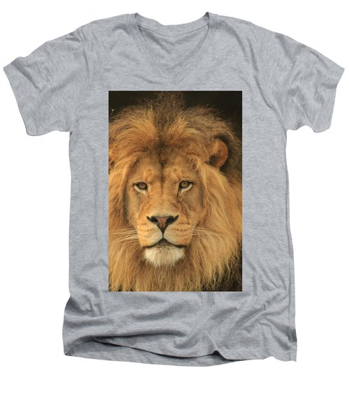 The Glory Of A King Men's V-Neck T-Shirt