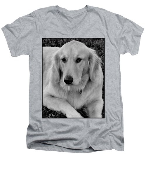 The Golden Retriever Men's V-Neck T-Shirt