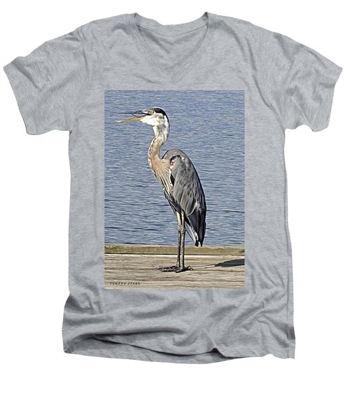 The Great Blue Heron Photo Men's V-Neck T-Shirt by Verana Stark