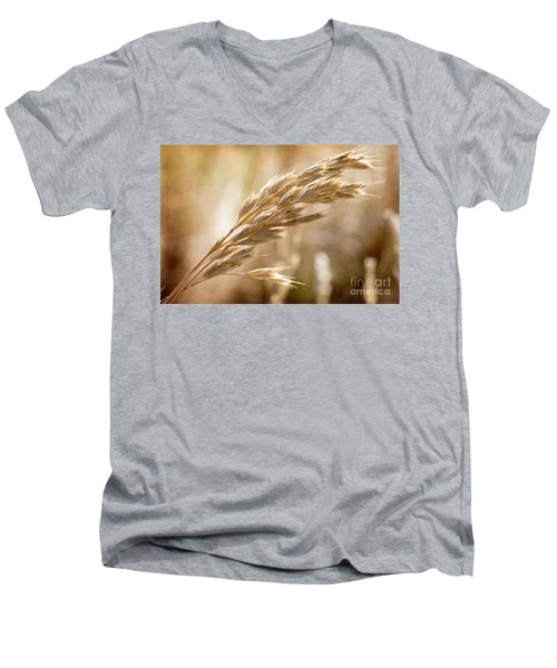 Men's V-Neck T-Shirt featuring the photograph The Hot Gold Hush Of Noon by Linda Lees
