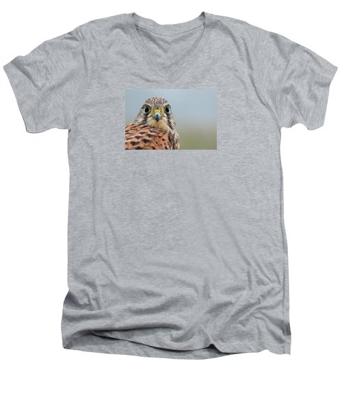 The Kestrel Face To Face Men's V-Neck T-Shirt by Torbjorn Swenelius