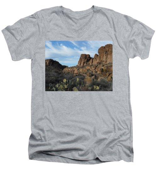 The Living Desert Of Arizona Men's V-Neck T-Shirt