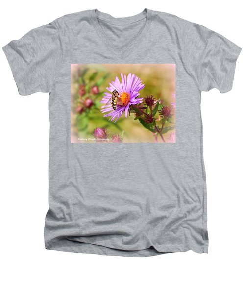 The Pollinator Men's V-Neck T-Shirt