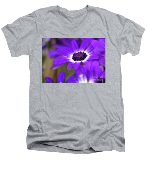 The Purple Daisy Men's V-Neck T-Shirt