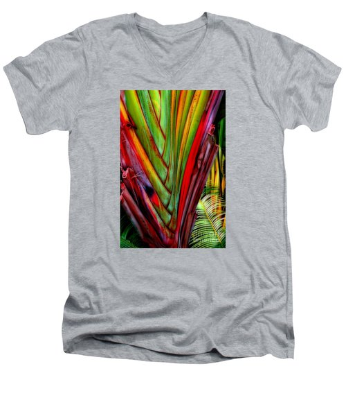 The Red Jungle Men's V-Neck T-Shirt