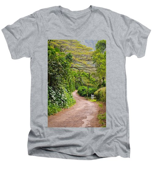 The Road Less Traveled Men's V-Neck T-Shirt by Denise Bird