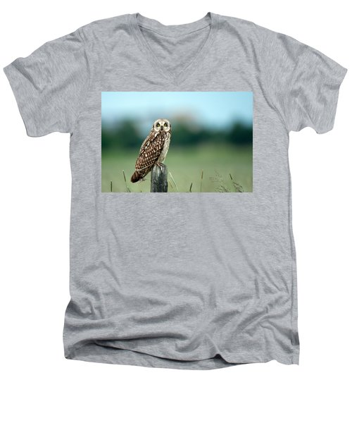 The Short-eared Owl  Men's V-Neck T-Shirt