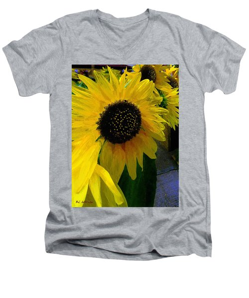 The Sun King Men's V-Neck T-Shirt