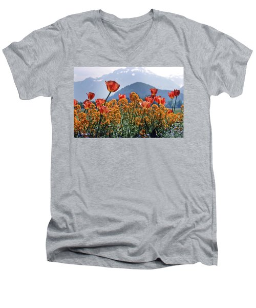 The Tulips In Bloom Men's V-Neck T-Shirt
