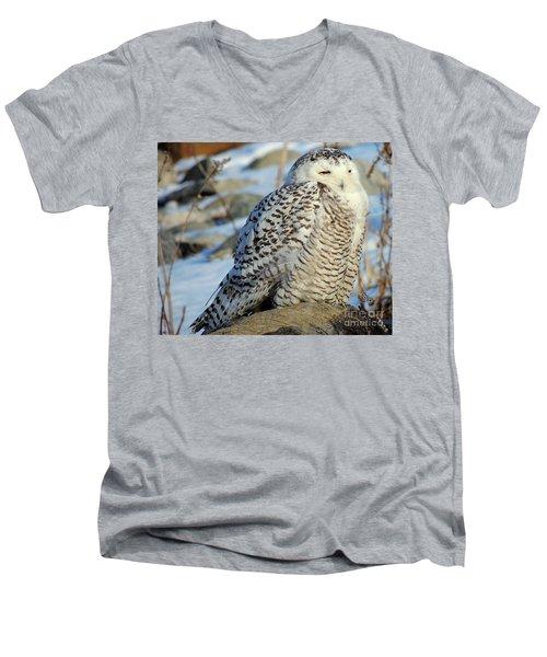 The Watcher Men's V-Neck T-Shirt by Marcia Lee Jones