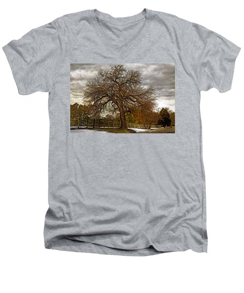 The Welcome Tree Men's V-Neck T-Shirt