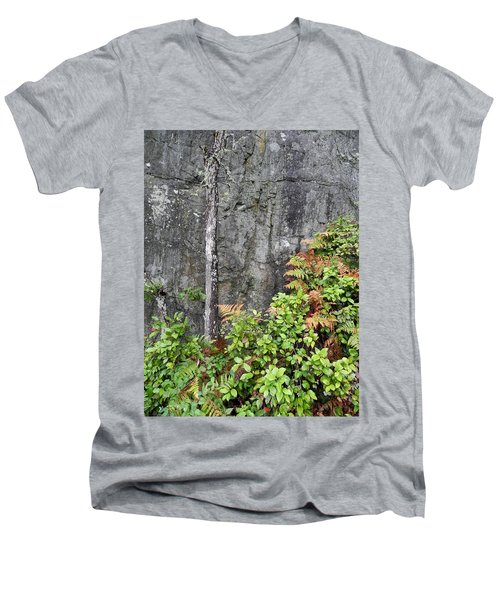 Men's V-Neck T-Shirt featuring the photograph Thetis In Fall by Cheryl Hoyle