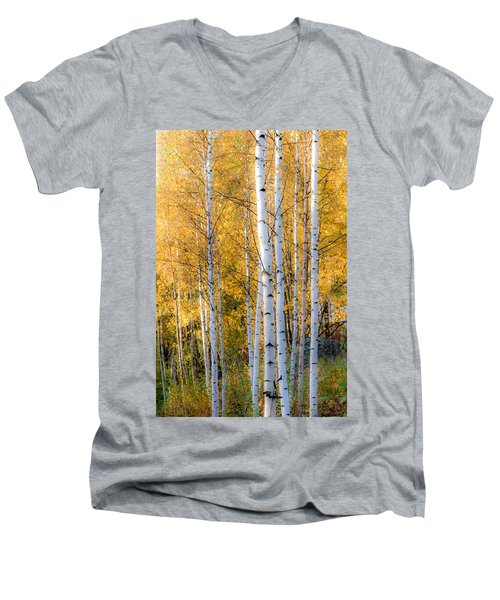 Thin Birches Men's V-Neck T-Shirt by Ari Salmela