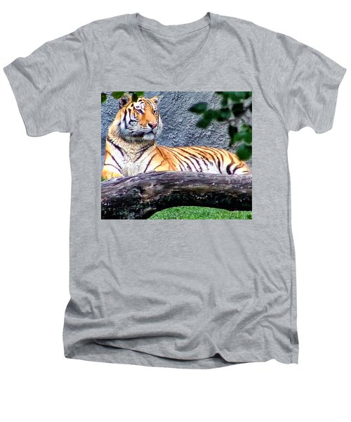 Men's V-Neck T-Shirt featuring the photograph Tiger 1 by Dawn Eshelman