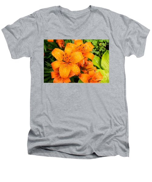 Tiger Lily After Morning Rain Men's V-Neck T-Shirt
