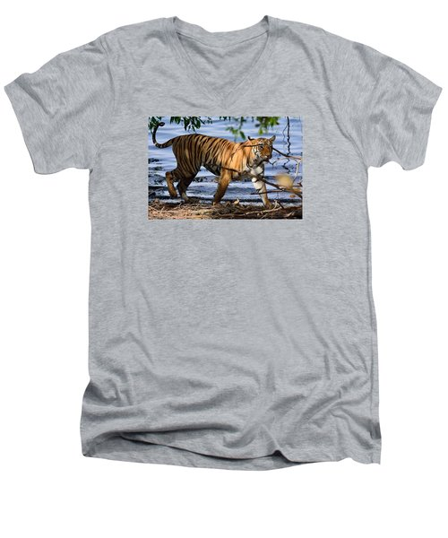 Tigress Along The Banks Men's V-Neck T-Shirt by Fotosas Photography