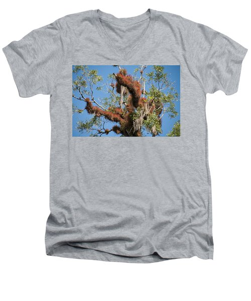 Tikal Furry Tree Closeup Men's V-Neck T-Shirt
