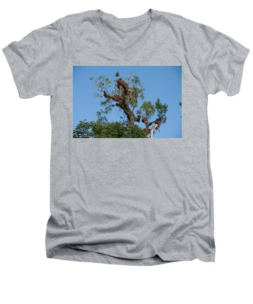 Tikal Furry Tree Men's V-Neck T-Shirt