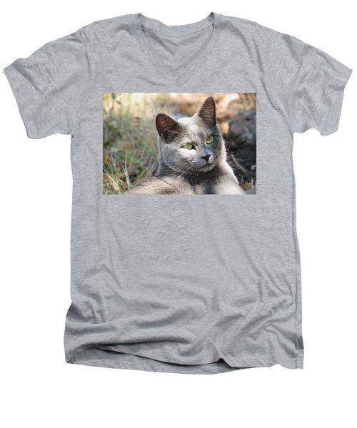 Tom Cat Men's V-Neck T-Shirt