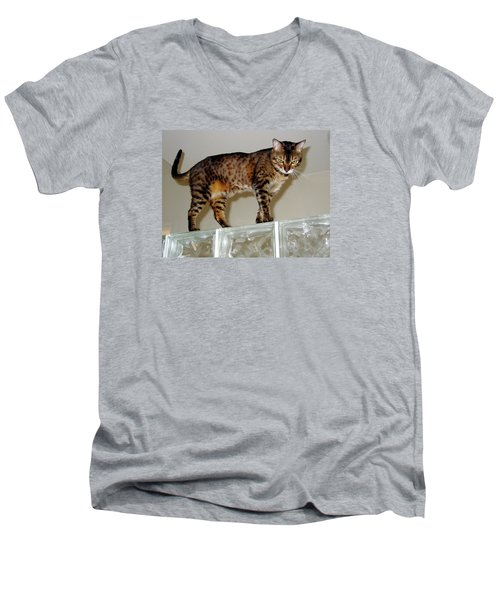 Men's V-Neck T-Shirt featuring the photograph Tora On Glass II by Phyllis Kaltenbach