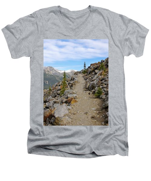 Trail To The Meadows Men's V-Neck T-Shirt