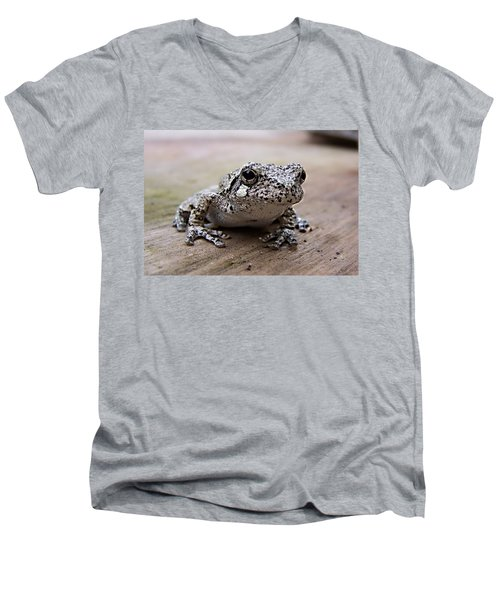 Tree Frog Men's V-Neck T-Shirt
