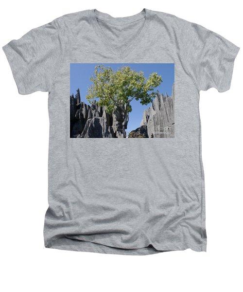 Men's V-Neck T-Shirt featuring the photograph Tree In The Tsingy De Bemaraha Madagascar by Rudi Prott