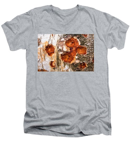 Tree Trunk Closeup - Wooden Structure Men's V-Neck T-Shirt by Matthias Hauser