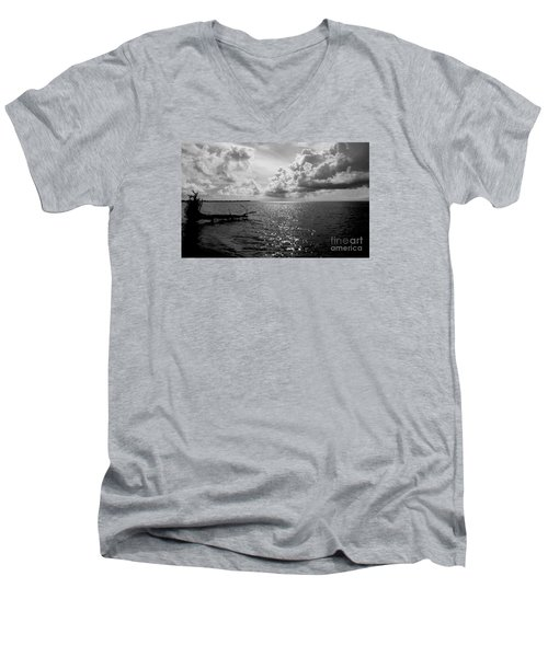 Treefall Men's V-Neck T-Shirt by Amar Sheow
