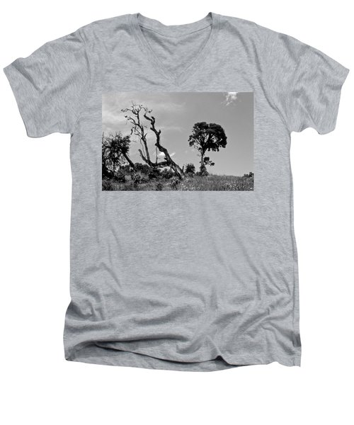 Trees In Cloud Forest Men's V-Neck T-Shirt by Lana Enderle
