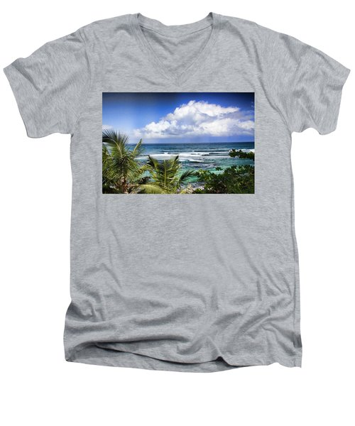 Tropical Dreams Men's V-Neck T-Shirt