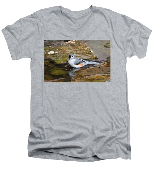 Tufted Titmouse In Pond Men's V-Neck T-Shirt by Sandy Keeton