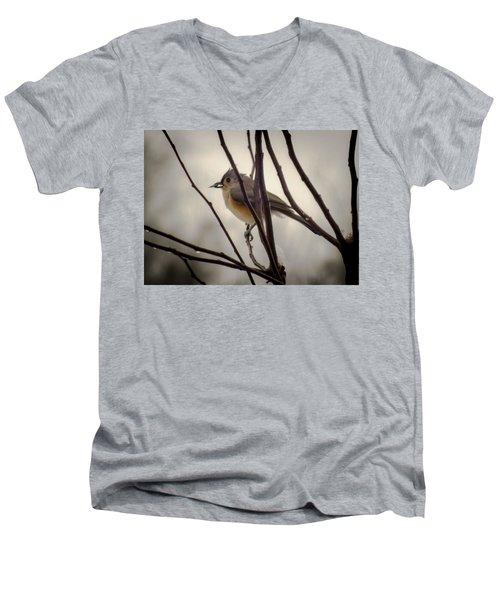Tufted Titmouse Men's V-Neck T-Shirt by Karen Wiles