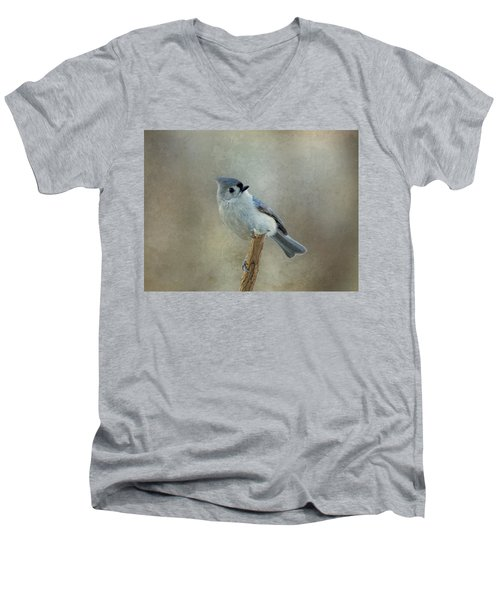 Tufted Titmouse Watching Men's V-Neck T-Shirt
