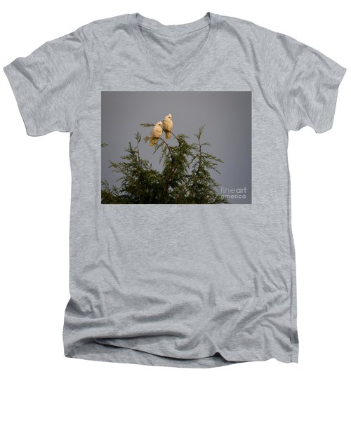 Twin Cockatoos Men's V-Neck T-Shirt